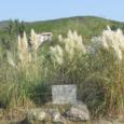Petracurbara ou la longue histoire… du comblement de la zone humide. Après la condamnation intervenue en 2011, une nouvelle étape judiciaire s'ouvre ce mercredi 12 septembre à 14 h. U […]