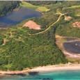 Znieff est l'acronyme qui désigne une zone naturelle d'intérêt écologique, floristique et faunistique. Depuis 1992, les Znieff de type 1 sont, en Corse, inconstructibles. Les enjeux de ces Znieff sont […]