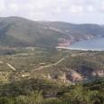 """Le Collectif pour la Loi Littoral lance une grande pétition en ligne """"Sauvons la biodiversité des ZNIEFF 1 en Corse des appétits immobiliers!"""" Le projet de Padduc en Corse prévoit […]"""