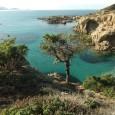230 personnalités (culturelles, scientifiques, politiques, etc) ont signé l'appel en faveur de l'inconstructibilité des znieff 1 littorales en Corse. La Collectivité territoriale de Corse entendra-t-elle raison?Car le projet de PADDUC […]