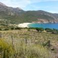 Les responsables du Padduc ont refusé d'intégrer les ZNIEFF 1 dans les espaces remarquables ou caractéristiques de la loi Littoral (ERC).La DREAL de Corse, Direction Régionale de l'Environnement, a soutenu […]