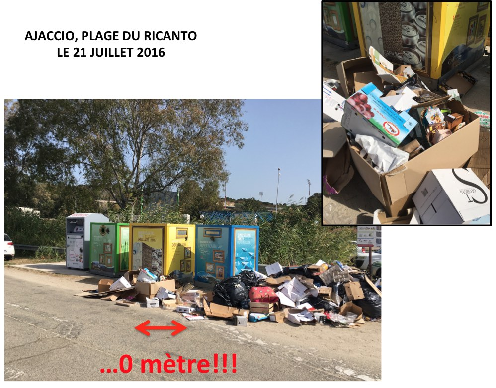 4 ordures au Ricantu TBD