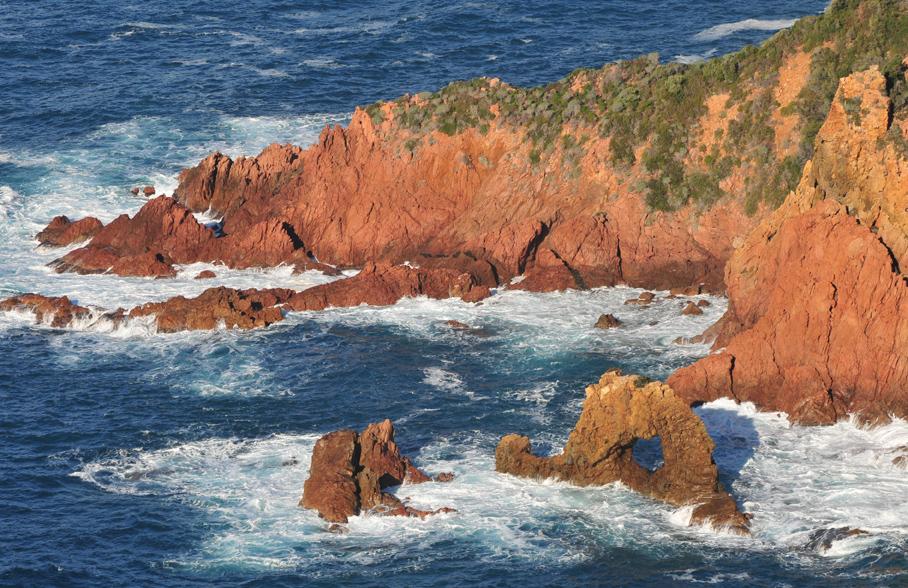 littoral-rive-nord-portoa-gauthier