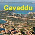 Cavaddu est inconstructible. Le Conseil d'État vient de confirmer ladécisionde la Cour d'appel de Marseille annulant le PLU DE L'ÎLE DE CAVADDUsur la commune de Bunifaziu. En septembre 2016, ABCDE […]