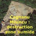 L'existence de la zone humide en arrière de la plage de Cagnanu, à l'ouest de la route, est attestée par les cartes IGN et un plan de la fiche de […]