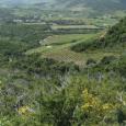 Actuellement en enquête publique : le classement du vignoble de Patrimoniu et de la Conca d'Oru. Ce (gros) travail de trois ans mené sous l'impulsion des vignerons, des élus locaux […]