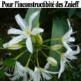 """Dans la longue liste des soutiens pour le maintien de l'inconstructibilité des Znieff dans le Padduc, voici un petit extrait de l'émission de Denis Cheissous """"CO2 Mon Amour"""" du 13/09/2014 […]"""