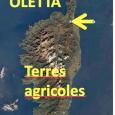 Le T.A. annule les zonages qui portaient atteinte aux terres agricoles Le P.L.U. d'Oletta approuvé le 28 mars 2013 visait à développer une urbanisation surdimensionnée, dans des conditions incompatibles avec […]