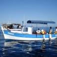 Le PADDUC rend possible l'édification d'auberges dites «du pêcheur» sur certaines plages. C'est une très dangereuse disposition. Pourquoi? Sachant qu'il existe autour de 200 licences de pêche en Corse, c'est […]