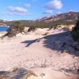 U Levante apporte son soutienaux agents de l'ONEMA (Office National de l'Eau et des Milieux Aquatiques) qui, à Murtoli, ont dressé des procès-verbauxpour extraction de sable de la plage d'Erbaghju, […]