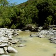 En aval de Corti, le Tavignani très pollué, 3 juillet 2016