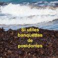 Texte de C.F. Boudouresque, extrait de l'œuvre collective de 7 scientifiques: «La grande valeur patrimoniale des plages de sable de Méditerranée, avec une attention spéciale pour les banquettes dePosidonia oceanica.» […]