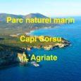 U Levante a dit non au plan de gestion du parc marin voté par son conseil de gestion réuni le 8 juillet 2019 à la salle des fêtes de San […]