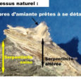 Les méandres du Tavignanu vont-ils devenir un éco (!) système poubellier? Il s'agit sans doute pour l'État de placer la Corse en pointe pour une expérience inédite: vérifier si un […]